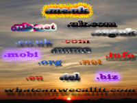 Domain Registration & Hosting